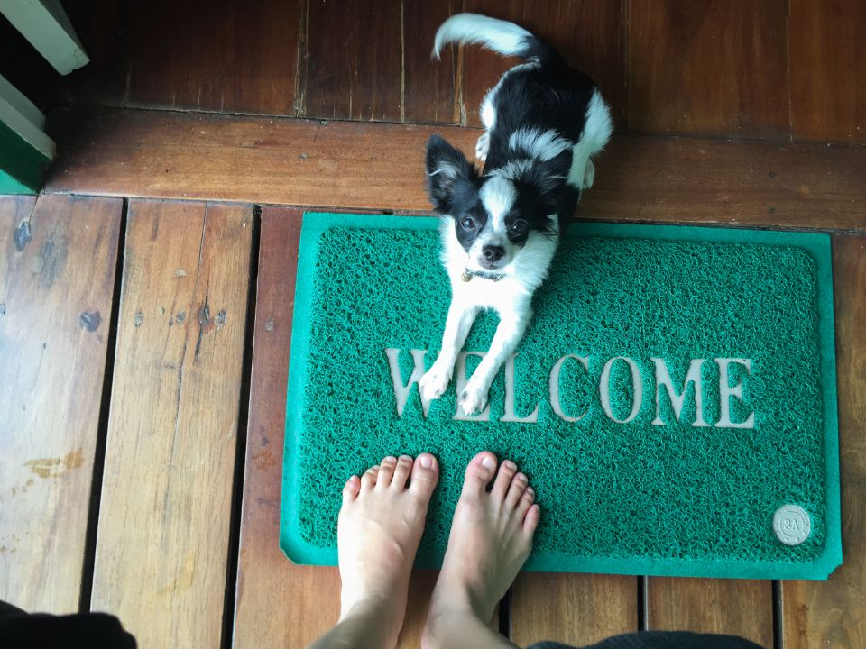 How To Place Entrance Mats For Your Home